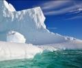 Гъсти дъждовни гори са властвали на Антарктида