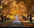 Денят е равен на нощта–настъпи есента