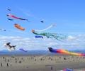 Фестивал на хвърчилата във Варна