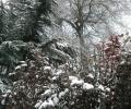 Зимата се завръща през уикенда, сняг затвори Шипка