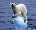 Новата ледена епоха може да започне още от 2014 г.