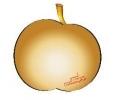 Златната ябълка – дни на кариерното развитие в СУ