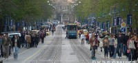 Запалването на коледната елха в София налага промени в движението