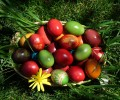 Започва традиционният Великденски конкурс във Велинград
