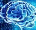 Ученик разработи тест за ранно откриване на Алцхаймер