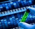 ДНК е новият харддиск