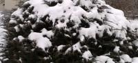 Благоевград осъмна със сняг