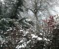 Дъжд и сняг в събота, в неделя – подобрение