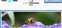 Министър Василева открива Зелената олимпиада