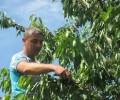 МВнР предупреждава за измами, свързани със сезонна работа в чужбина