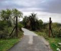 """Конференция за """"Култури, памет, наследства в региона на Южната българска граница"""" организира ИЕФЕМ – БАН"""