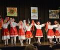 """Българите във Виена празнуват 3-и март в """"Дом Витгенщайн"""""""
