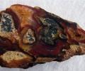 """НБУ ще участва във Великденското изложение на минерали, скъпоценни камъни и фосили в Националния музей """"Земята и хората"""""""