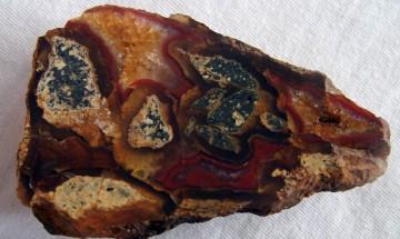 """НБУ участва във """"Великденско изложение на минерали, фосили и скъпоценни камъни"""""""